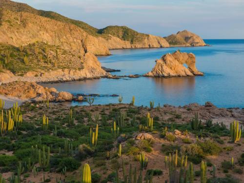 Isla Catalina Elephant Rock
