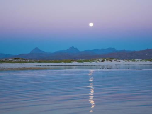 Isla Coronado Moonset