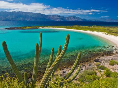 Isla Coronado Playa