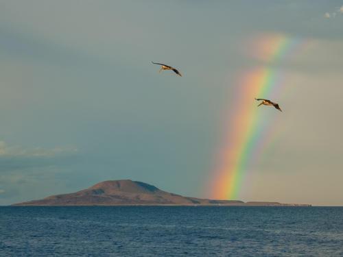 Isla Coronado Rainbow
