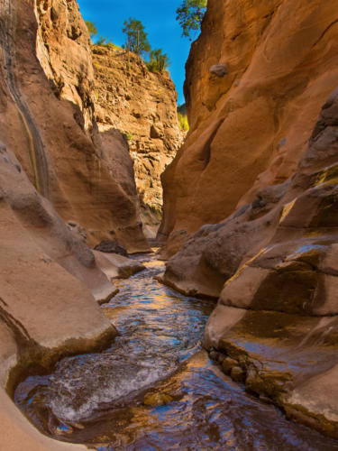 Mezquite Canyon 1