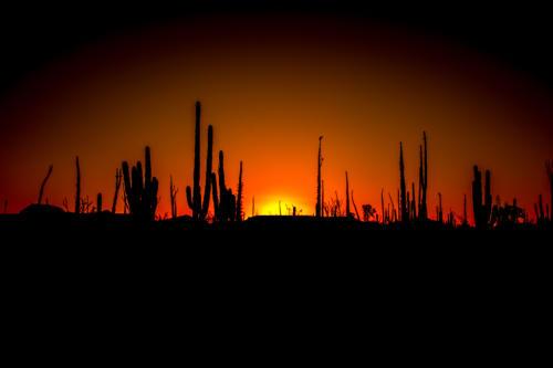 Catavina Desert 12