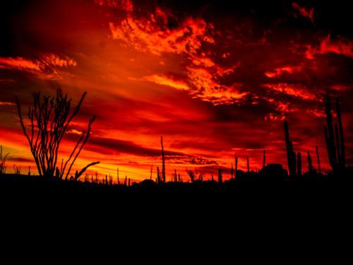 Catavina Desert 16