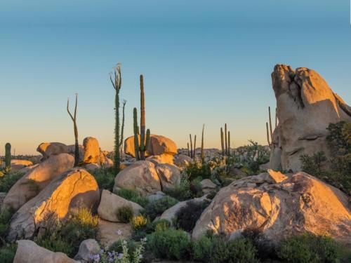 Catavina Desert 9